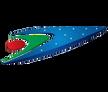 US-Bangla Airlines